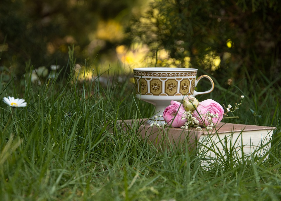idylka na zahradě