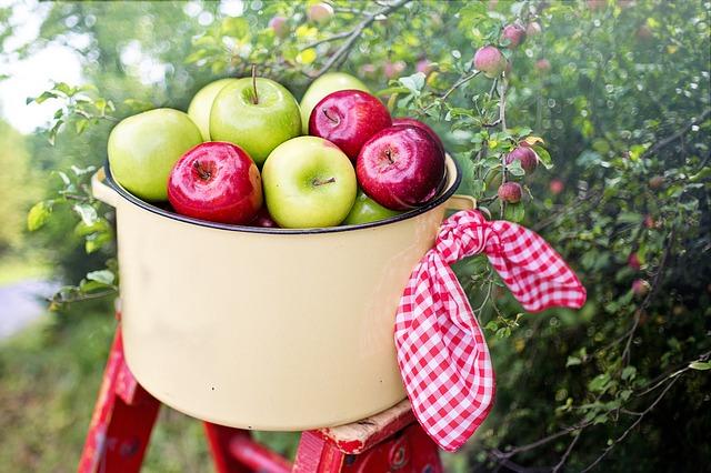 jablka v hrnci