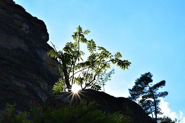 slunce za skalami