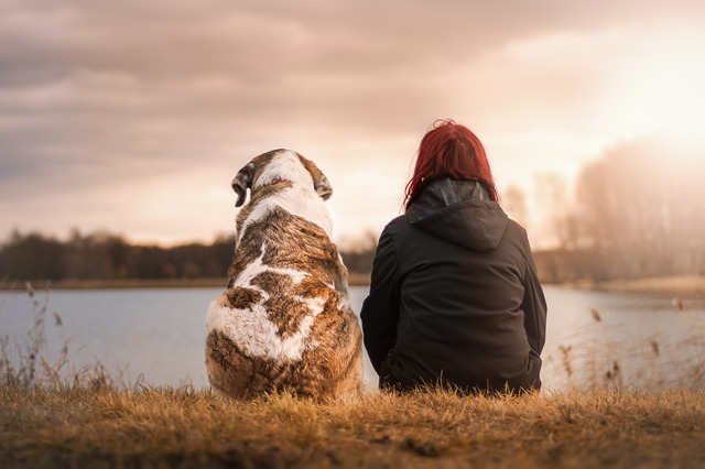 pes s ženou u rybníka